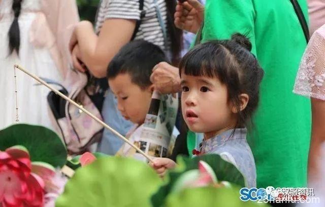 四川南充传统文化盛宴精彩上演