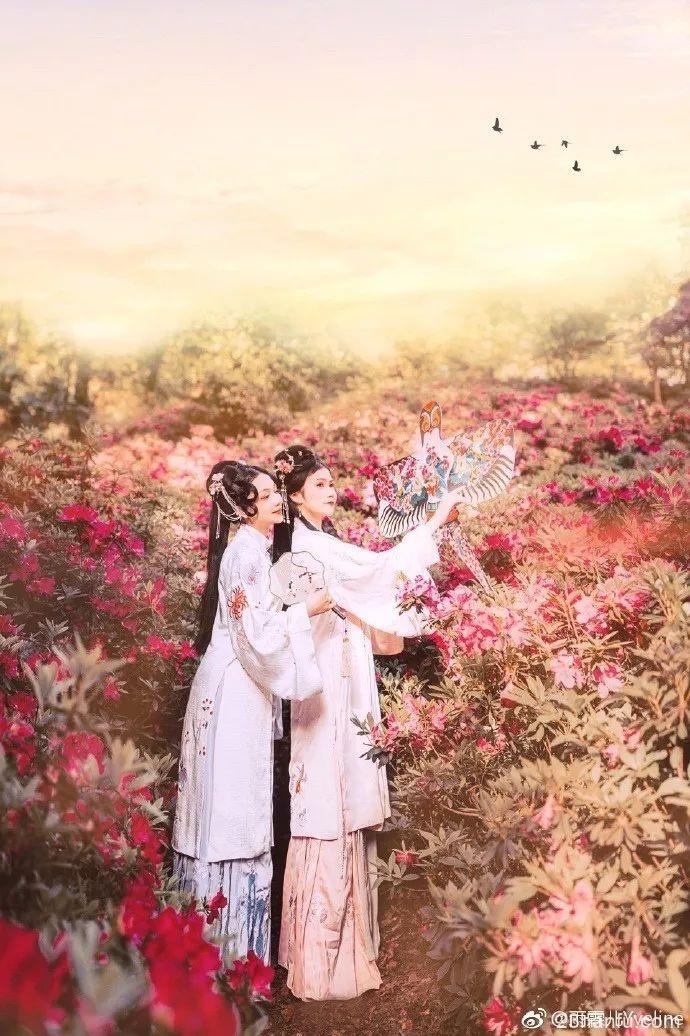 【汉服摄影】携闺蜜 着汉服 点缀杜鹃花海