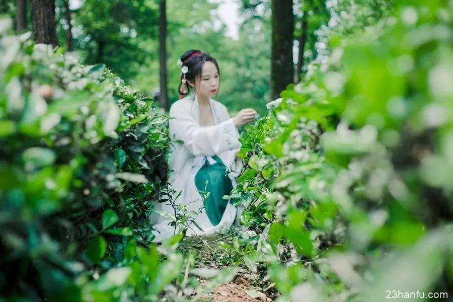 【汉服美图】山中何事,松花酿酒,春水煎茶。