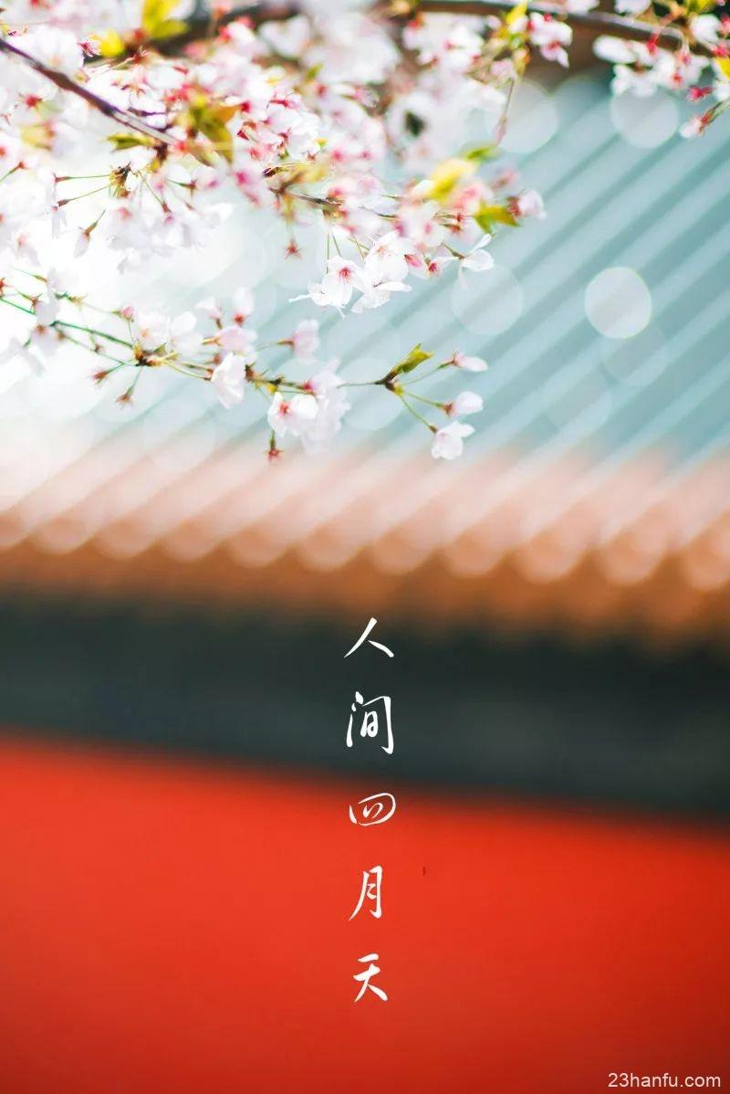 【清明节】着一袭汉服,赴一场春的约会 