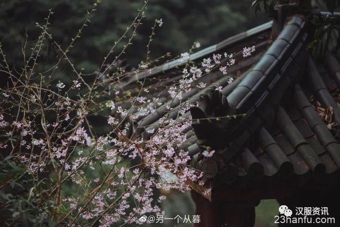 【汉服摄影】昨日入山喝茶去