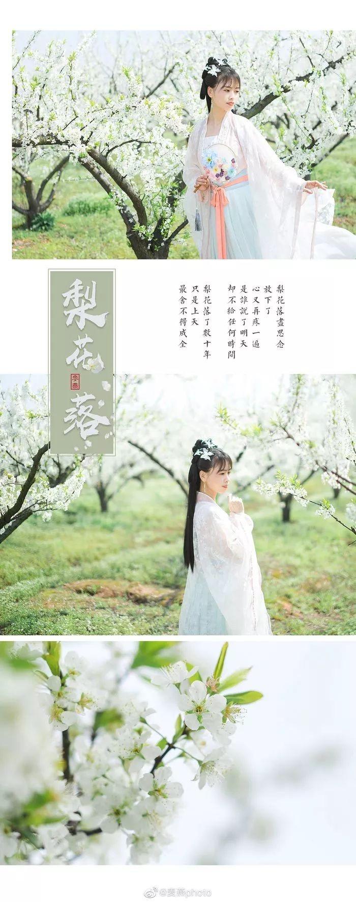 【汉服美景】梨花落,春不在