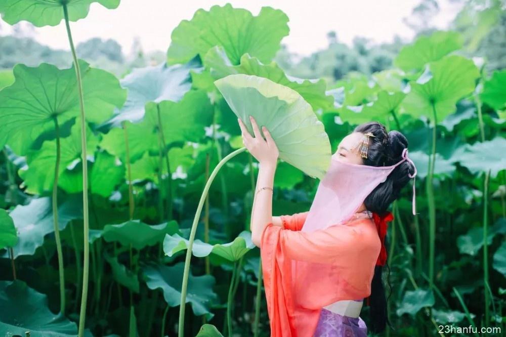 【汉服摄影】青荷盖绿水
