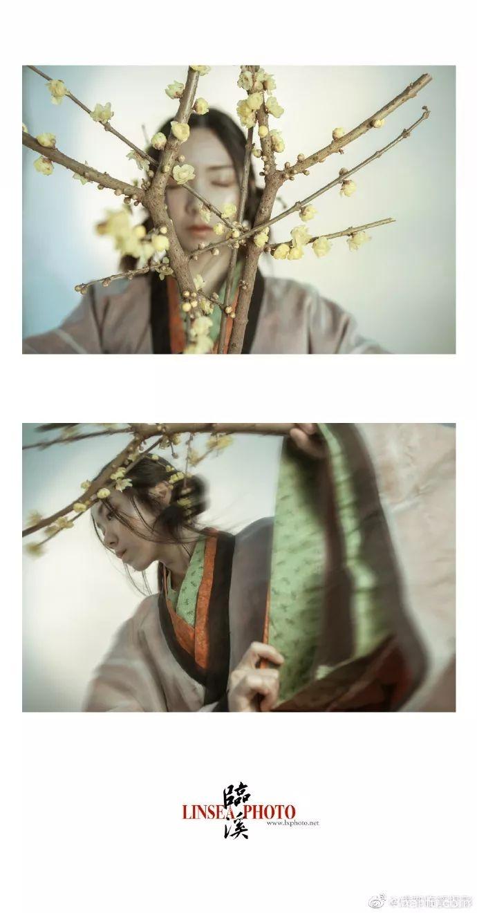 【汉服摄影】竹影和诗瘦,梅花入梦香。