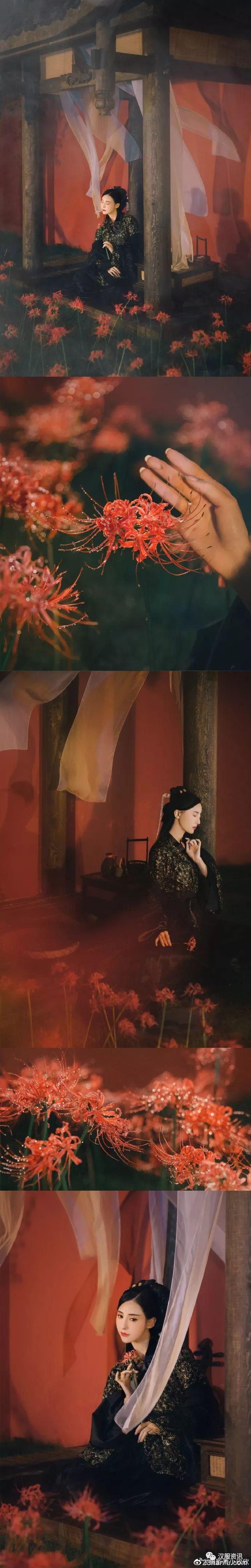 【汉服私影】曼珠沙华