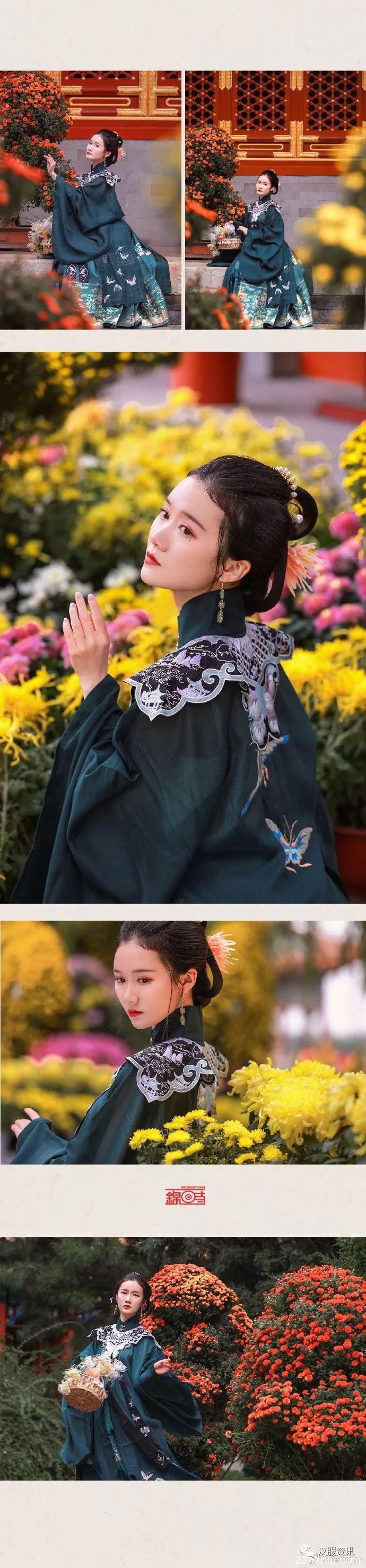 【汉服私影】簪菊图