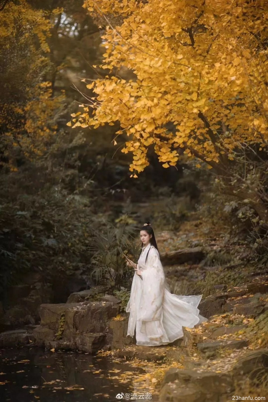 【汉服美图】银杏树下飞天舞,更兼高阁玉兰风